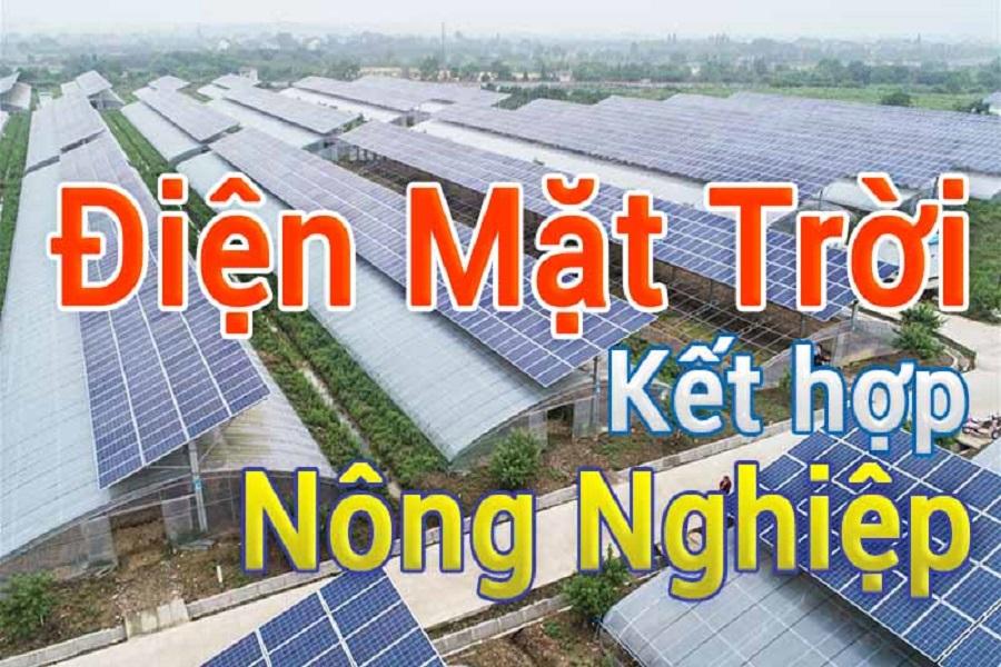Điện mặt trời nông nghiệp - Giải pháp mới cho nông nghiệp và nông dân